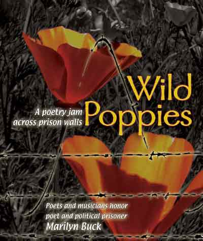 Wild poppies poetry by and with marilyn buck wild poppies poetry cd cover mightylinksfo
